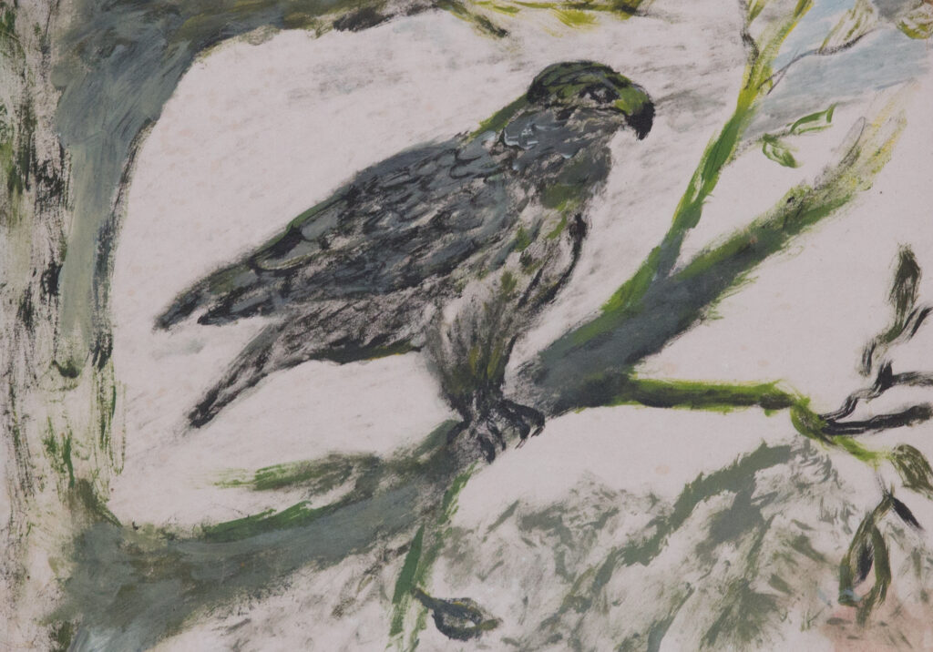 """<p align=""""left""""><strong><em>Hawk</em></strong></br>9 x 12""""</br>Acrlylic on paper</br>$125</br><strong><a href=""""https://checkout.square.site/buy/LBIDWUDSNHE5OPBNPGRIKU2K"""">PURCHASE</a></strong></p>"""