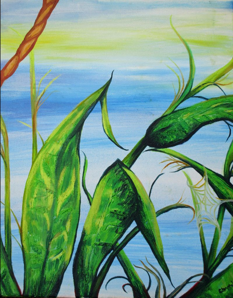 """<p align=""""left""""><strong><em>Spiders in the Summer Corn</em></strong></br>20 x 16""""</br>Mixed media on canvas</br>$125</br><strong><a href=""""https://checkout.square.site/merchant/NQX1GCJY9CN1F/checkout/232OZXYUHIST26NQKGL4RQSH"""">PURCHASE</a></strong></br>"""